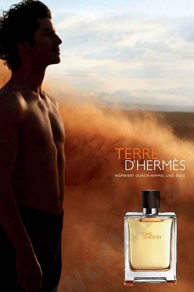 meilleurs parfum homme terre d'hermes