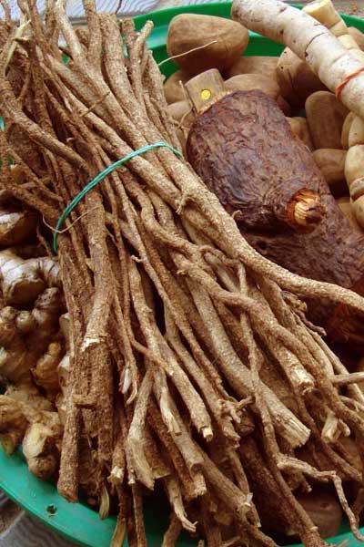 yohimbe viagra naturel
